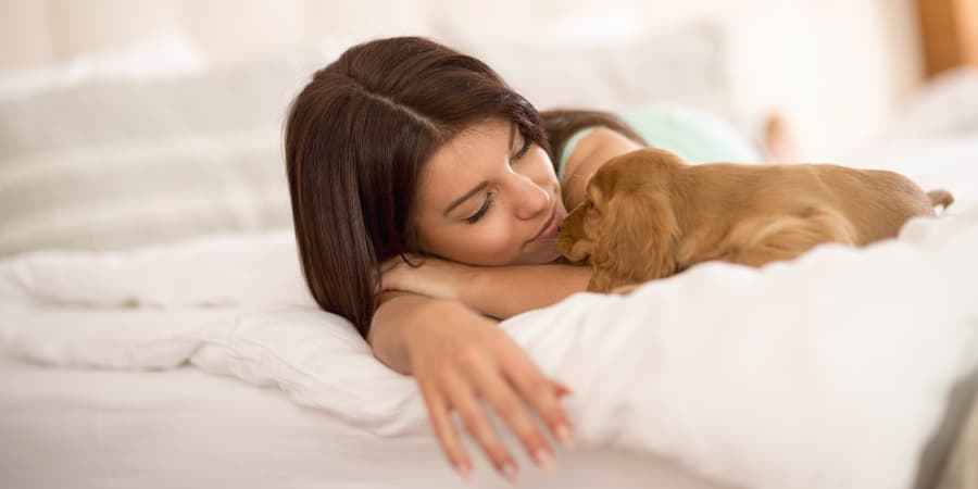 Woman with puppy laying next to her on a pillow